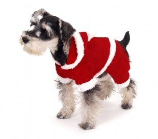 107443 Conjunto de PAPÁ NOEL con gorrito ideal para perros pequeños 3 botones