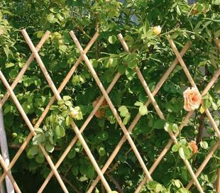 377536 Valla de bambú extensible para jardín jardín 120x240 cm
