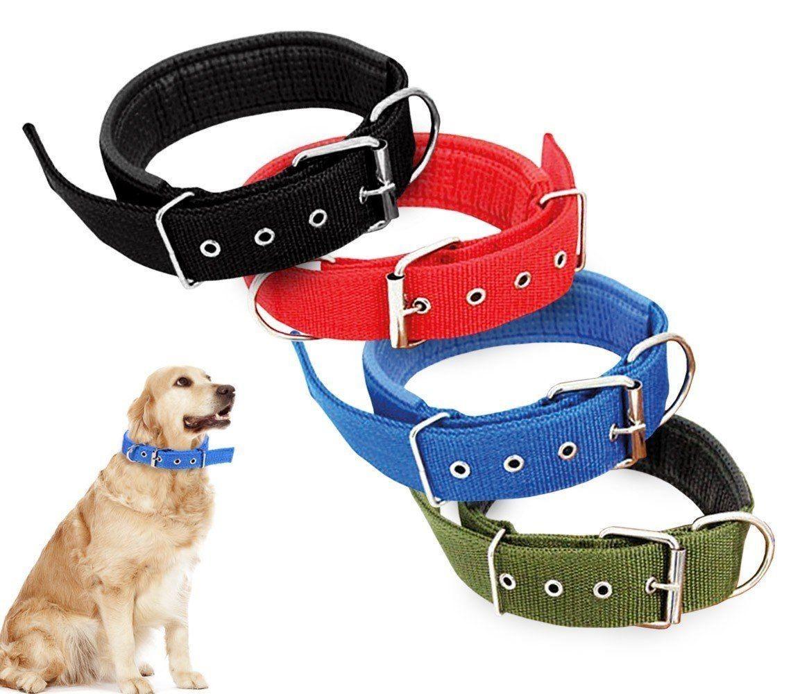 Collares para perros for Collares para perros